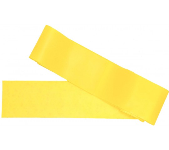 Victory Sports Resistance Band Light