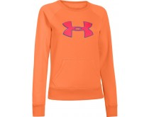Under Armour Coldgear Storm Sweater