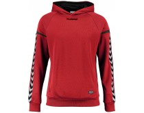 Hummel Authentic Charge Poly Hoodie Kids