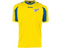 Hummel Everton Shirt Heren HV DES 72