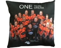 NL Team One Team One Dream Pillow